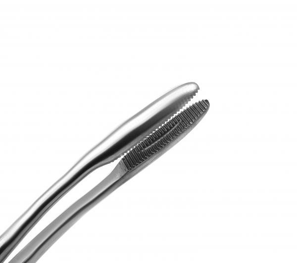 Sponge Forceps Maier 9.8 inch (25 cm) curved